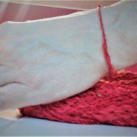 Jak chroni czerwona nitka na ręce